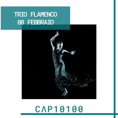 Trio Flamenco @ CAP10100