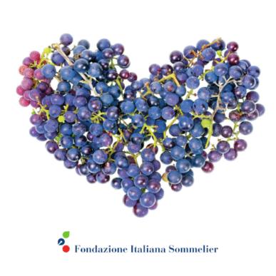 L'ABC del Vino – 1° Corso di Avvicinamento alla Conoscenza del Vino @Bologna