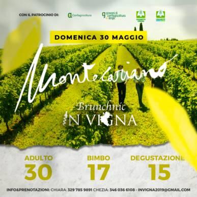 BRUNCH-nic nei vigneti – Cantina Montecariano – Valpolicella (VR)