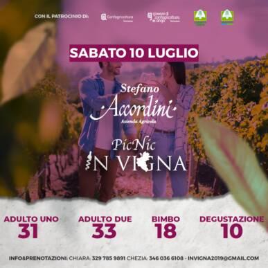 Pic Nic InVigna sotto le stelle – Stefano Accordini Valpolicella wines