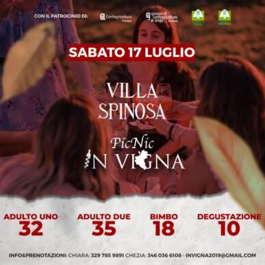 Pic Nic In Vigna sotto le stelle – Villa Spinosa – Negrar
