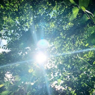 Solstizio d'Estate: la magia della Luce nel giorno più lungo dell'anno!