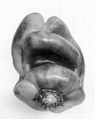 """Sognando Edward Weston: il gruppo F64, la passione con Tina Modotti e la fotografia """"pura""""!"""
