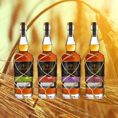 RUM TASTING | Whisky plan for Plantation
