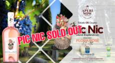 """Pic Nic Wine experience c/o Cantina Marchesi Fumanelli – San Pietro in Cariano(VR) """"Special Edition"""""""