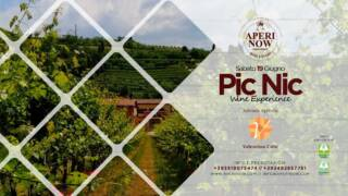 Pic Nic Wine BIO experience c/o Cantina Valentina Cubi – Fumane (VR)