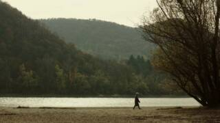 NÒT FILM FEST   FILMS FOR BREAKFAST – FILM A COLAZIONE