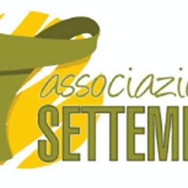 Associazione 7000 per l'organizzazione di Ela Carnabuci